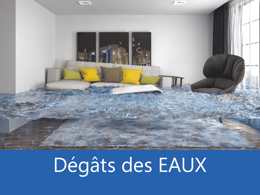 expertise humidité 58, expert humidité Nevers, cause moisissure Nièvre, solutions hulidité 58,